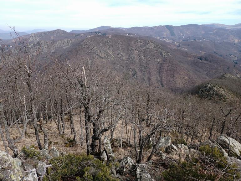 Monte Taeriné e Valle Orba